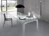 trpezarijski-stolovi-od-stakla-19